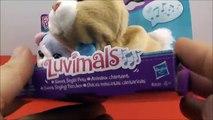 Et lapin poussin électronique amis agneau animaux domestiques en chantant Parlant Luvimals furréaux  