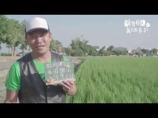 未來少年-蕭青陽酷搜校園-彰化縣香田國小-2016 11月號