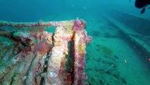 Diving the wreck of Rosalie Moller bearbeiten