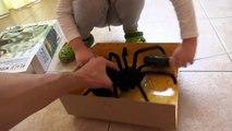 Noir Araign? e déballage veuve jouets sur araignée veuve noire déballage commande radio r / c
