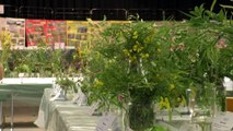 Hautes-Alpes : Plus de 700 espèces de plantes à La Salles-les-Alpes pour en apprendre sur la flore locale
