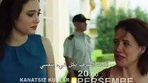 مسلسل طيور بلا اجنحة الحلقة 9 مترجم بالعربية
