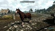 Skyrim - Elder Knowledge Quest - Time Saving Glitch - video