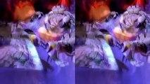 VR 3D Roller Coaster VR Video 3D SBS [Google Cardboard VR Box 360] Virtual Reality Videos