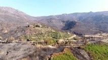 Olmeta di Tuda : paysages lunaires après les incendies