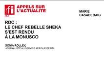RDC : le chef rebelle Sheka s'est rendu à la MONUSCO