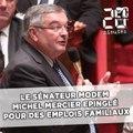 Le sénateur MoDem Michel Mercier épinglé pour des emplois familiaux