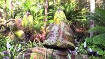 James Cameron, Zoe Saldana, Bob Iger talk Pandora The World of Avatar