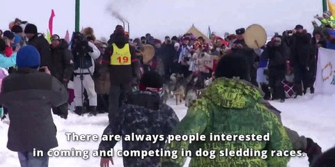 Heart, soul and huskies race across Siberia