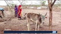 Environnement: depuis aujourd'hui, l'humanité vit à crédit