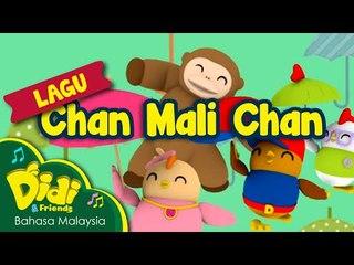 Lagu Kanak Kanak | Chan Mali Chan | Didi & Friends