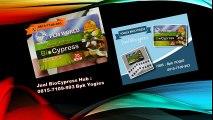 0815-7109-993 | Jual BioCypress Surabaya, Jual Obat Asam Urat Surabaya