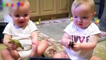 Cute Twin Babies Laughing Compilation  Top Twins Babies Videos  HD 2017