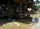 Relief Workers Throw Supplies to Locals Trapped by Floodwaters in Sakon Nakhon