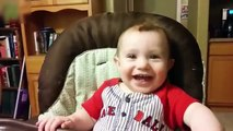 Funny Babies Laughing Video  Baby Laughing Funny Videos  Funny Cute Babies Videos