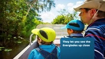 How to Maximize Your Experience on Airboat Rides in the Everglades