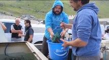 Opération d'alevinage  dans les lacs de montagne des Hautes-Pyrénées