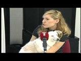 Mascotas: Acupuntura en animales - 31/03/15