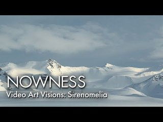 Video Art Visions: Sirenomelia