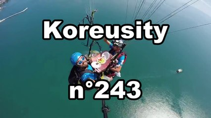 Koreusity n°243