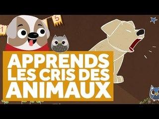 Apprendre Les Cris des Animaux - L'École des Zibous ! Vidéo Educative