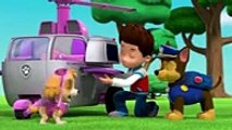 PAW Patrol Pups Save the Parade Clip 3 -, tv 2017 & 2018