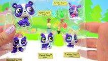 Лпс мама Дети сюрприз Семьи распаковка Набор для игр Наименьший домашнее животное Магазин игрушка видео Cookww