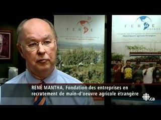 Téléjournal - La syndicalisation des travailleurs agricoles étrangers