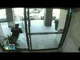 Ladrón se golpea con puerta de cristal al querer escapar// Ladrones estúpidos