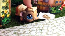 Azra ve Zümranın Maceraları 2.Bölüm - Minişler Cupcake Tv - Littlest Pet Shop -LPS Minişler Türkç
