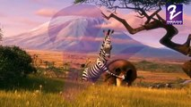 Madagascar in Hindi -- Madagascar Europe's Most Wanted 2012 S03E01(360p)