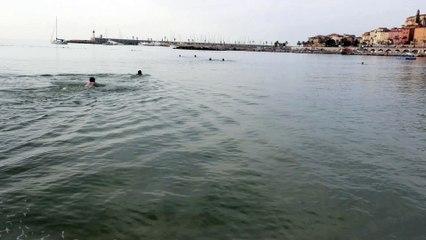Prise de panique, une retraitée sauvée de la noyade
