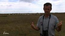 Marais Poitevin : La LPO soutient l'action des éleveurs