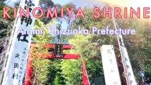 Return to the secret Shinto shrine 秘密の日本神社に戻る - Walking in Japan 日本でのウォーキング