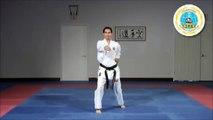 Ten No Kata _ Shito Ryu Karate Do Katas