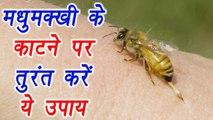 Bee Sting: मधुमक्खी के काटने पर तुरंत करें ये उपाय | Home Remedies for pain & swelling | Boldsky