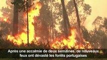 Incendies au Portugal: des brasiers actifs dans tout le pays