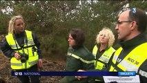 Gard : les pompiers enquêtent pour déterminer l'origine des incendies