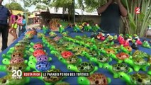 Costa Rica : le paradis des tortues