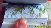 Dragon Ball Z Flipbook - Broly vs Vegeta