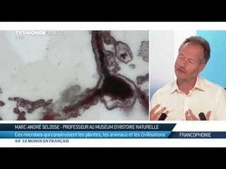 Marc-André Selosse : ces microbes qui construisent les plantes, les animaux et les civilisations