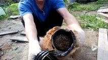 Sauvetage d'un hérisson coincé dans une canalisation de Jardin en Russie !