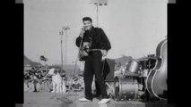 40 ans après, la magie Elvis opère toujours
