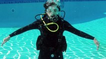Scuba Diving Hand Signals for Identifying Marine Life