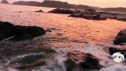 三浦半島 高磯でメジナ釣り _ Pandora.TV_2