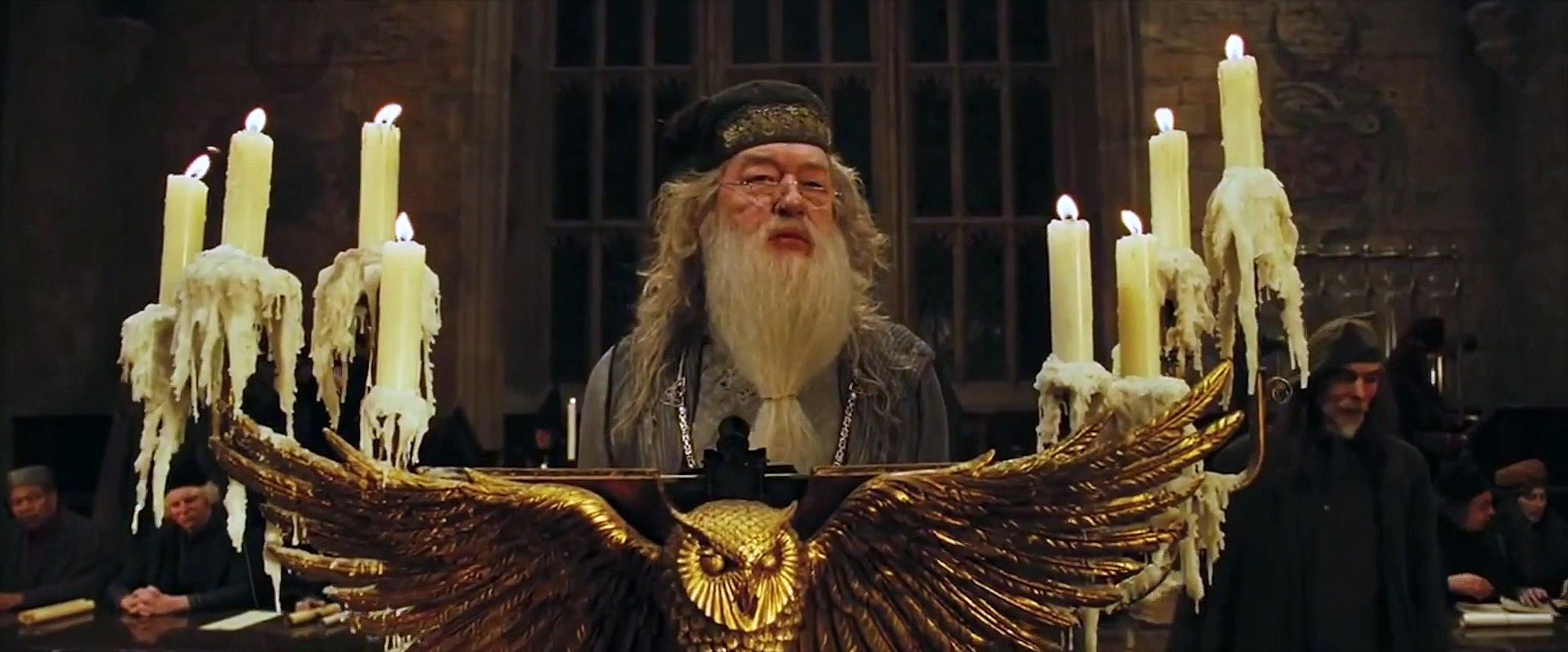 Potter Things — мэшап Гарри Поттера и Очень странные дела (Mash