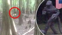 Siaga Monster Kadal; pihak berwenang memperingatkan warga kemunculan monster saat gerhana - TomoNews