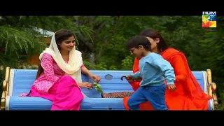 Yakeen Ka Safar Episode 18 HUM TV Drama 16 August 2017