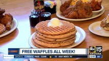 Free waffles for National Waffle Day at Lolo's Chicken and Waffles