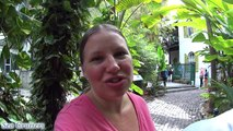 Ernest Hemingway House • Gardens • Cats! Key West Florida Cruise Vlog [ep8]